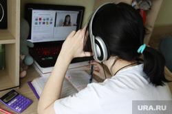 Дистанционное обучение. Клипарт. Курган, удаленная работа, удаленка, дистанционное обучение, удаленное обучение, уроки онлайн