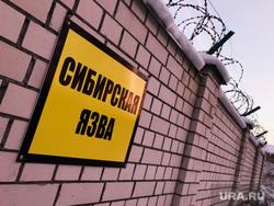 Граница несанкционированной свалки и скотомогильник с сибирской язвой. Свердловская область, поселок Рудный, сибирская язва, скотомогильник