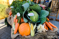 Областная агропромышленная выставка «АГРО-2019». Продукты питания. Челябинск, капуста, овощи, продукты, морковь, тыква, еда, потребительская корзина