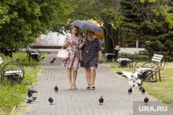 Городской сад. Курган, голуби, зонты, люди с зонтами, городской сад, дождь