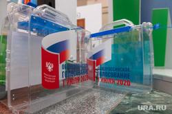 Презентация голосования по поправкам к Конституции РФ в ЦИК. Москва, презентация, наглядная агитация, голосование, урна для голосования, поправки в конституцию