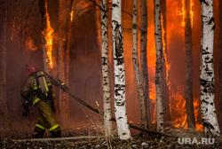 Пожар в расселенном доме, в поселке Солнечный. Сургут, пожарный, пожар, березы, огонь