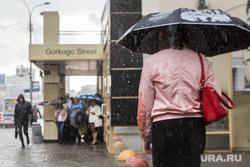 Ливень. Екатеринбург, остановка, ливень, зонт, горького, плохая погода, дождь