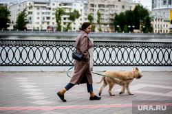 Виды города во время пандемии коронавируса. Екатеринбург, собака, эпидемия, прогулка с собакой, екатеринбург , виды города