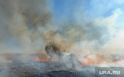 Учения МЧС по тушению лесных пожаров и сельскохозяйственных палов. Челябинск, дым, пожар в поле, горит трава, огонь
