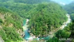 Черногория, пейзаж, лес, природа