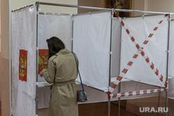 Голосование за поправки в конституцию 2020, г. Пермь, голосование, избиратель, социальная дистанция
