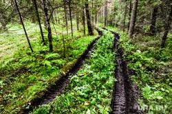 Национальный парк «Зигальга» и «Зюраткуль». Поселок Тюлюк. Челябинская область, лес, заповедник, колея, природа