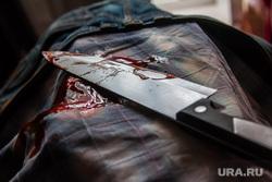 Окровавленный нож. Курган, кровь, окровавленный нож, убийство, кухонный нож