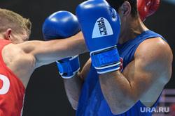 Предварительные бои первого дня AIBA WORLD BOXING CHAMPIONSHIPS 2019. Екатеринбург, удар, единоборства, бокс