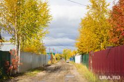 Клипарт 7. Нижневартовск, деревня, сады, дача, огороды, желтые деревья, осень