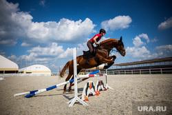 Секции конкура в конно-спортивном клубе