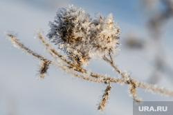 Виды Кунгура. Пермский край, зима, иней, заледенение