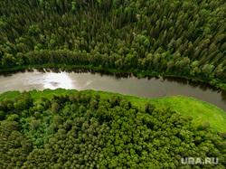 Виды с квадрокоптера. Екатеринбург, деревья, лес, река чусовая, природа