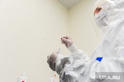Проверка и забор анализов на коронавирус прилетевших пассажиров в челябинском аэропорту Игорь Курчатов. Челябинск, пробирка, защитный костюм, эпидемия, медики, врачи, тест, санитарный кордон, вирусолог, бактериолог
