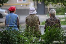 Дети. Пенсионеры. Курган, бабушки, пенсионеры на прогулке, лето в городе