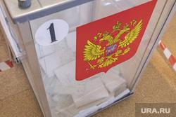 Голосование за поправки в конституцию 2020, г. Пермь, выборы, урна, голосование