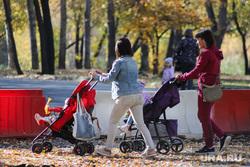 Работы по благоустройству ЦПКиО. Курган, ремонтные работы, цпкио, строительные работы, материнский капитал, молодые мамы, благоустройство парка, детская  коляска
