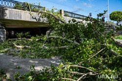 Последствия урагана в Екатеринбурге, улица карла либкнехта, екатеринбург , ураган, циклон, последствия урагана, устранение последствий, дерево, остановка тюз