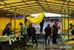 Некрасовский рынок.  Курган , рыба, продавец, рыбный отдел, покупатель, некрасовский рынок