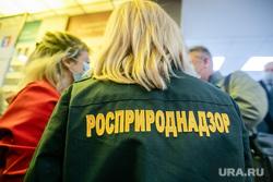 Рабочая поездка Дмитрия Кобылкина в Норильск. Норильск, росприроднадзор, радионова светлана