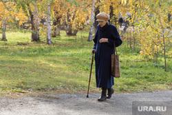 Клипарт. Курган, пожилая женщина, бабушка, пенсионерка с палочкой