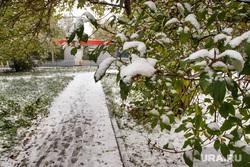 Первый снег. Екатеринбург, зима, первый снег, деревья в снегу, снегопад, осень