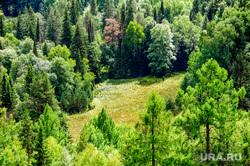 Национальный парк «Зигальга» и «Зюраткуль». Поселок Тюлюк. Челябинская область, лес, поляна, заповедник, природа, тайга