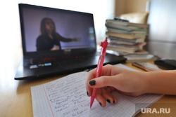 Клипарт на тему дистанционного обучения. Курган , обучение, учебники, домашнее обучение, дистанционное обучение, удаленное обучение, дистант