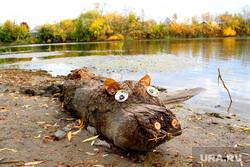 Курган осень, разное, бревно, чучело, река тобол, уличные поделки, осень
