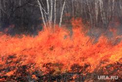 Пресс-конференция МЧС Курган, пожар, огонь