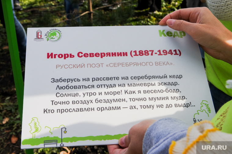 Высадка кедров в Литературном сквере. Челябинск