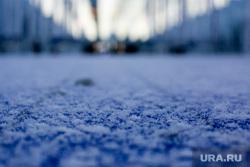 Елка на ВДНХ. Москва, зима, первый снег, новогодняя елка