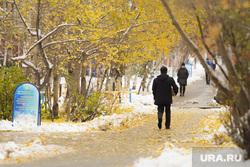 Первый снег. Сургут, парк, осень