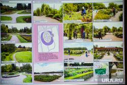 Дендрологический парк около УПИ (необр). Екатеринбург