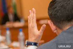 Заседание городской Думы. Курган, рука, поднятая рука, голосование