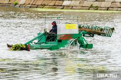 Очистка реки Миасс от водорослей. Челябинск, река миасс, водоросли, чистка реки