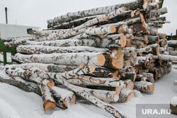 Разное. Курган, Шадринск, пиломатериал, дрова, береза, дерево, склад древесины