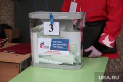 Голосование по изменению конституции уличное. Пермь, ящик для голосования, голосование по поправкам в конституцию