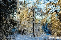 Хребет Зигальга, поселок Верхний Катав, Челябинская область, зима, лес, национальный парк