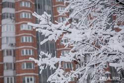 Снегопад в Москве. Москва, зима, снегопад