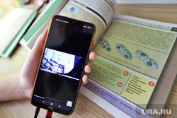 Социальная сеть ВКонтакте. Курган, учебник, мобильный телефон, удаленка, дистанционное обучение, дистант, обучение на дому, онлайн уроки, школьный учебник