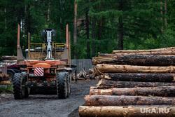 Екатеринбургское лесничество во время подготовки к летнему пожароопасному сезону. Екатеринбург, деревья, лесопилка, бревна, древесина, пилорама, лесозаготовка, лесничество, обработка древесины