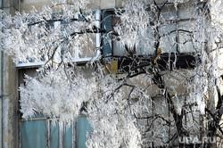 ЖКХ. Челябинск, зима, мороз, ледяные узоры, сосульки