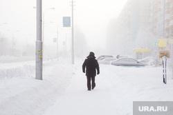 Февральские морозы. Сургут, зима, мороз, холод