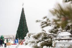 Новогодняя елка. Сургут, елка новогодняя
