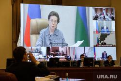 Совещание в полпредстве по распространению новой коронавирусной инфекции в УрФО. Екатеринбург, комарова на экране