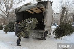 Рейд по местам несанкционированной торговли елками. Челябинск, погрузка, елки, конфискация, елочный базар, торговля елками