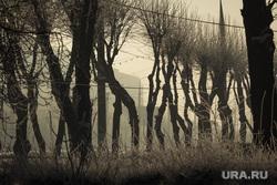 Клипарт. Магнитогорск, зима, деревья, смог, город, нму, экология