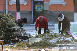 Строительство ледового  городка на центральной площади. Курган , елки выбросили, женщины, подготовка к празднику, новый год, праздник